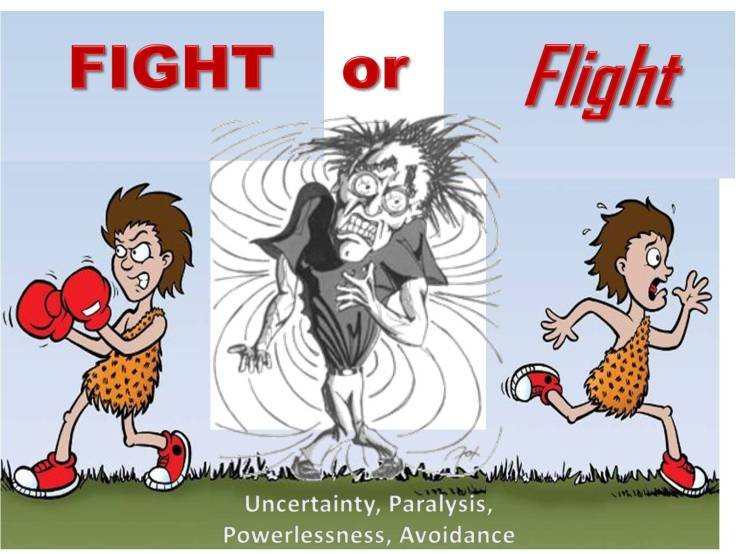 fight-or-flight-uncertainty